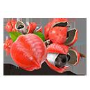 Экстракт семян Гуараны